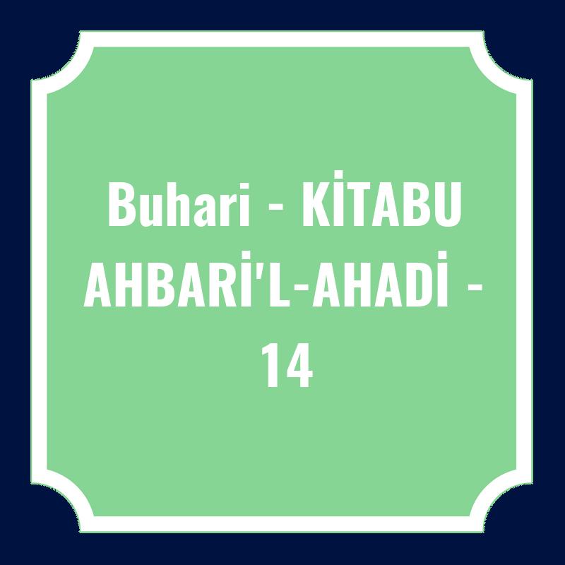 Buhari - KİTABU AHBARİ'L-AHADİ - 14