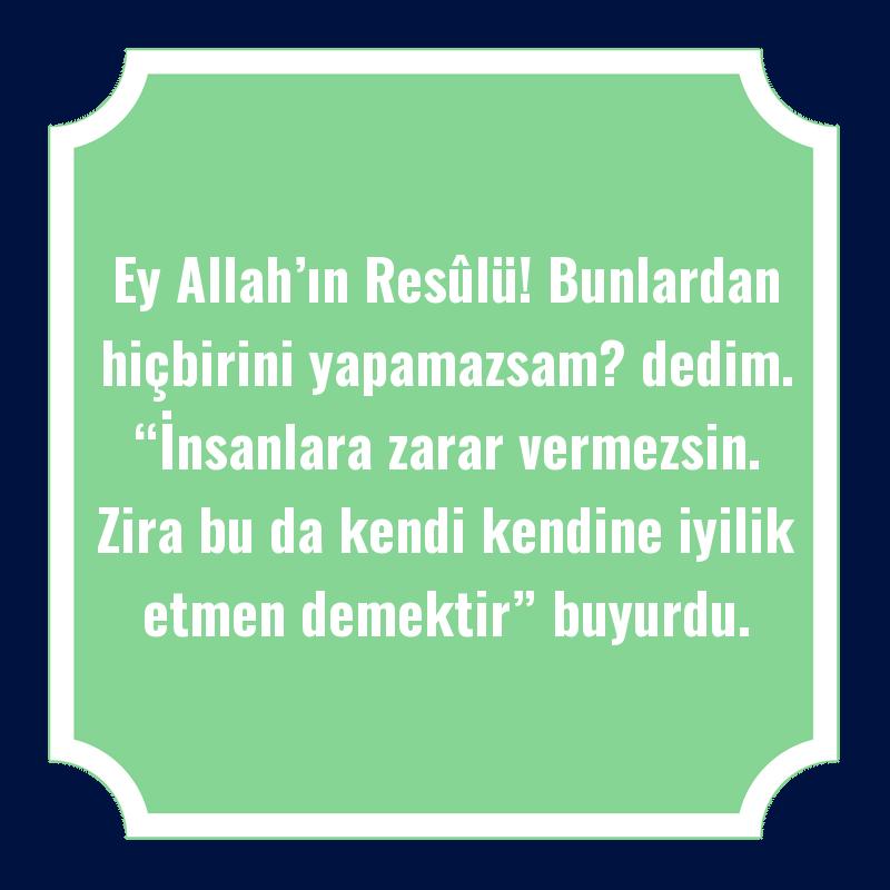 """Ey Allah'ın Resûlü! Bunlardan hiçbirini yapamazsam? dedim. """"İnsanlara zarar vermezsin. Zira bu da kendi kendine iyilik etmen demektir"""" buyurdu."""