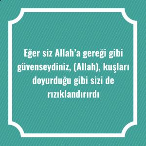 Eğer siz Allah'a gereği gibi güvenseydiniz, (Allah), kuşları doyurduğu gibi sizi de rızıklandırırdı