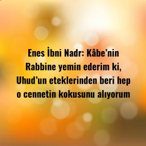 Enes İbni Nadr: Kâbe'nin Rabbine yemin ederim ki, Uhud'un eteklerinden beri hep o cennetin kokusunu alıyorum